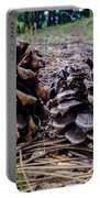 Evergreen Pinecones Portable Battery Charger