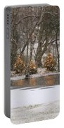 Evergreen Reflection Portable Battery Charger