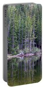 Evergreen Reflections Portable Battery Charger
