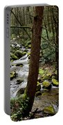 Evergreen Stream Ravine Portable Battery Charger