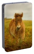 Exmoor Wild Pony Portable Battery Charger