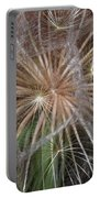 Experience The Dandelion Portable Battery Charger