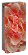 Expressionist Rose Portable Battery Charger