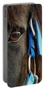 Eye Of The Percheron Portable Battery Charger