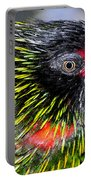 Eye Of The Tropics Portable Battery Charger