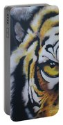 Eye Of Tiger Portable Battery Charger