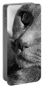 Eyes Of Russian Blue Portable Battery Charger