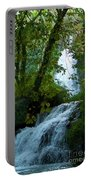 Eyes Over The Flowing Water Portable Battery Charger
