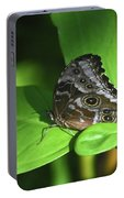Eyespots On The Closed Wings Of A Blue Morpho Butterfly Portable Battery Charger