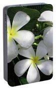 F1 Plumeria Frangipani Flowers Hawaii Portable Battery Charger