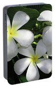 F1 Plumeria Frangipani Flowers Hawaii Portable Battery Charger