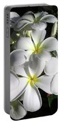 F13-plumeria Flowers Portable Battery Charger