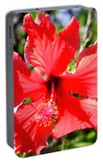 F20 Red Hibiscus Portable Battery Charger