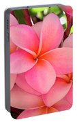 F23 Plumeria Frangipani Flowers Portable Battery Charger