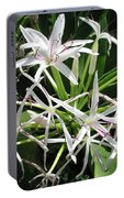F3 Queen Emma Lily Portable Battery Charger