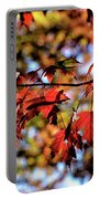 Fabulous Fall Portable Battery Charger