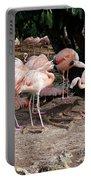 Fabulous Flamingos Portable Battery Charger