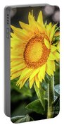 Just Another Pretty Face Portable Battery Charger