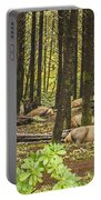 Faces In The Woods Portable Battery Charger