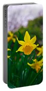 Daffodils Sky Portable Battery Charger