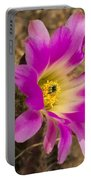 Faded Cactus Beauty Portable Battery Charger