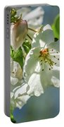 Fading Beauties Portable Battery Charger