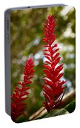 Fading Botanicals Portable Battery Charger