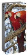 Fair Pair - Scarlet Macaw Portable Battery Charger