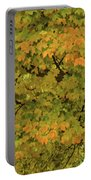 Fall #2 Portable Battery Charger