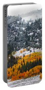 Fall And Winter Collide  Portable Battery Charger