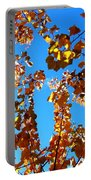 Fall Apricot Leaves Portable Battery Charger