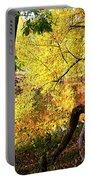 Fall At Lincoln Lake Portable Battery Charger