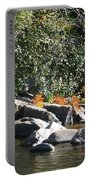 Fall At The Creek Portable Battery Charger