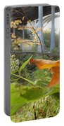Fall At The River Portable Battery Charger