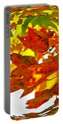 Fall Ball Portable Battery Charger