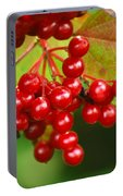 Fall Berries 2 Portable Battery Charger