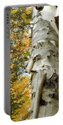 Fall Birch Tree Portable Battery Charger