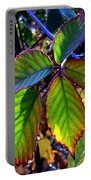 Fall Blackberry Portable Battery Charger