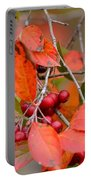 Fall Color 1 Portable Battery Charger