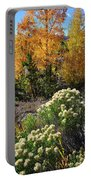 Fall Color Comes To Dillon Reservoir Portable Battery Charger