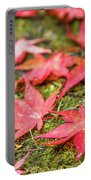 Fall Color Maple Leaves At The Forest In Nikko, Tochigi, Japan Portable Battery Charger