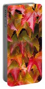 Fall Colored Ivy Portable Battery Charger