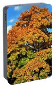 Fall Colors 19 Portable Battery Charger