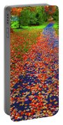 Fall Colors 2014-#15 Portable Battery Charger
