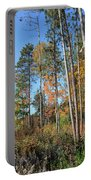 Fall Colors Along The Norway Beach Loop Portable Battery Charger