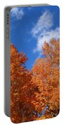 Fall Colors In Spokane Portable Battery Charger