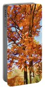 Fall Colors Looking Awesome Portable Battery Charger