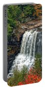 Fall Falls 2 Portable Battery Charger