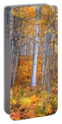 Fall Fiesta Portable Battery Charger