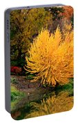 Fall Fireworks Portable Battery Charger